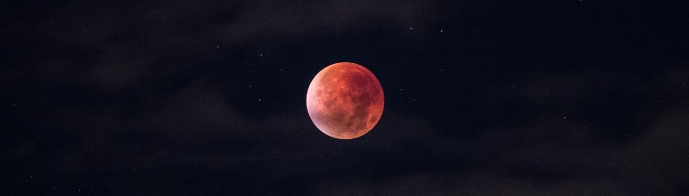 Lunar Eclipse, by Tanisha Bhatia